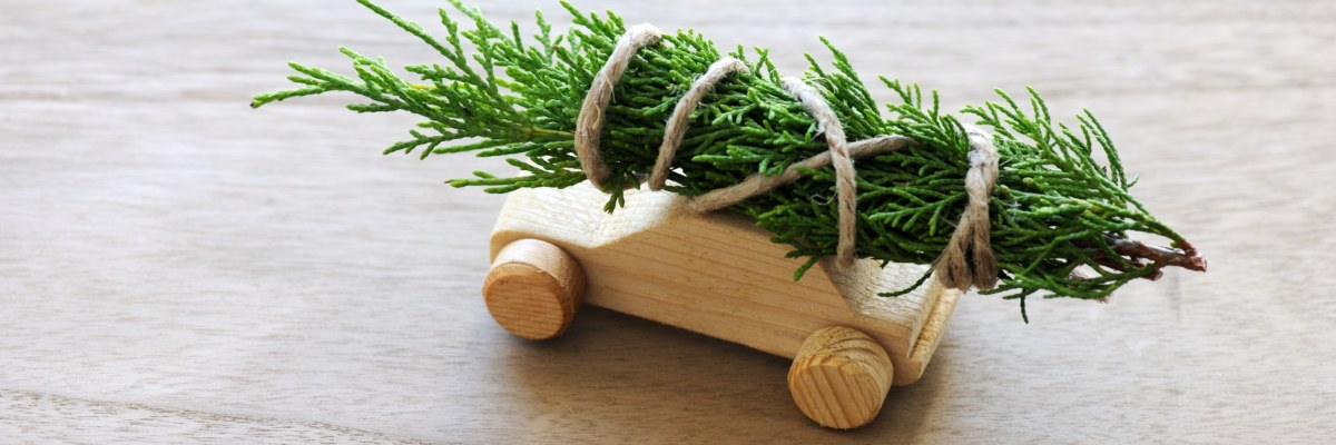 wooden toy car with foliage on roof