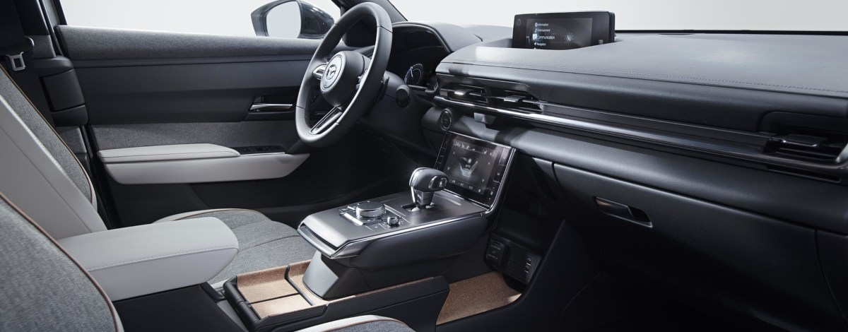 interior view of car showing cork detailing